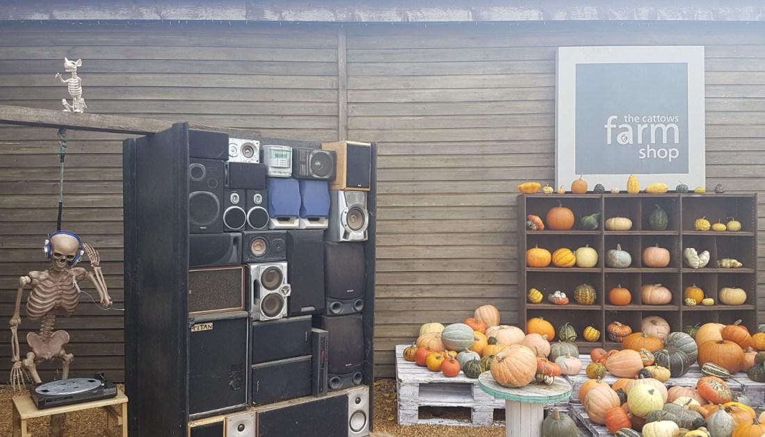 Skeleton Display - Pumpkin Picking at Cattows Farm