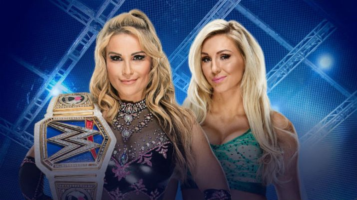 Preview and Predictions WWE Hell In A Cell 1082017 Natalya Charlotte Flair