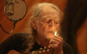 Willie_Nelson_Its_All_Going_to_Pot