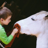 He overcame his fear of horses 322/365