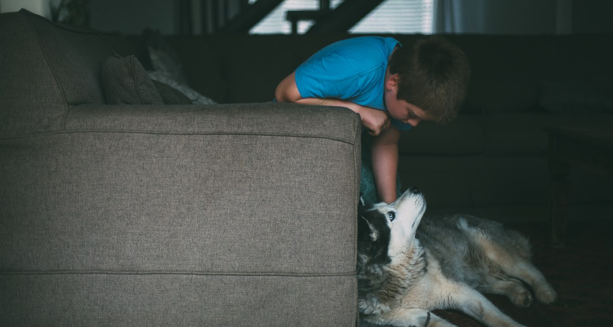Quiet light – a boy and his dog
