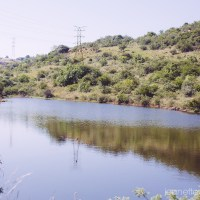 A walk in Kloofendal nature reserve
