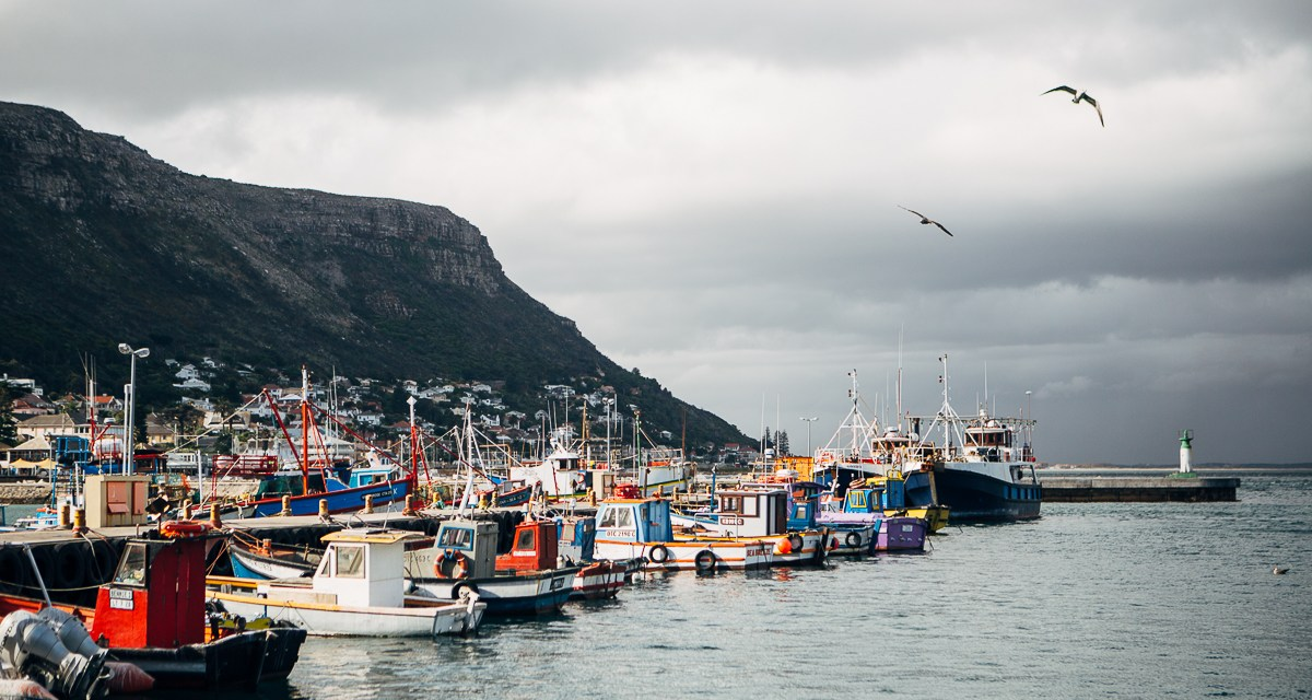 [Photos] Kalk Bay harbour on a rainy day