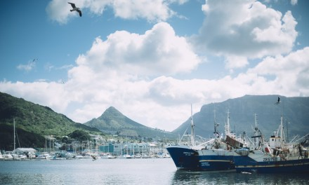 Hout Bay and the Bay Harbour Market