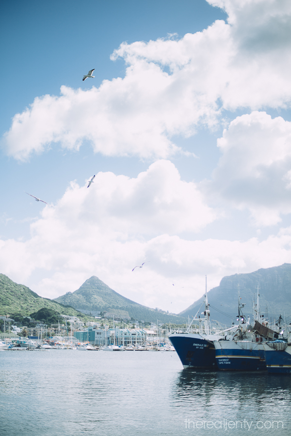 hout-bay-and-market-002