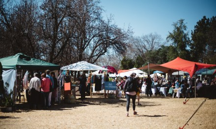 The spring edition of the Linden Market in the park