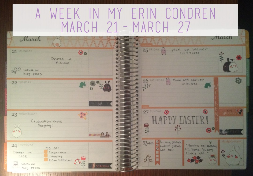 A Week in My Erin Condren March 21 - March 27 Overview | The Rebel Planner
