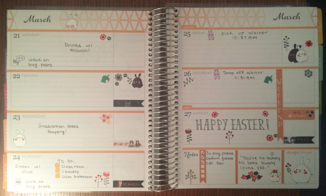 A Week in My Erin Condren March 21 - March 27 | The Rebel Planner