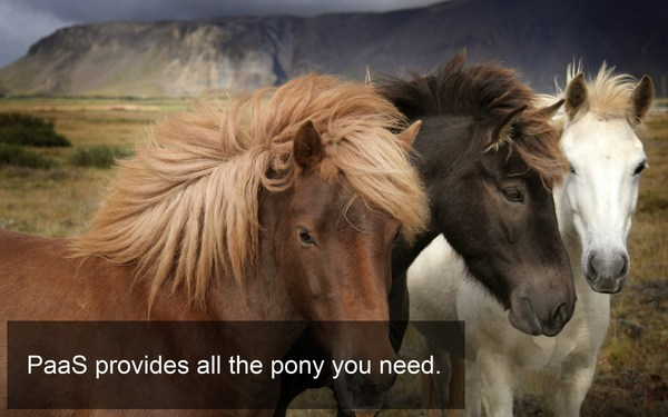Ponies as a service