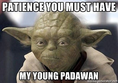 Patience Yoda Meme | How to Become a Web Developer and Learn Web Development
