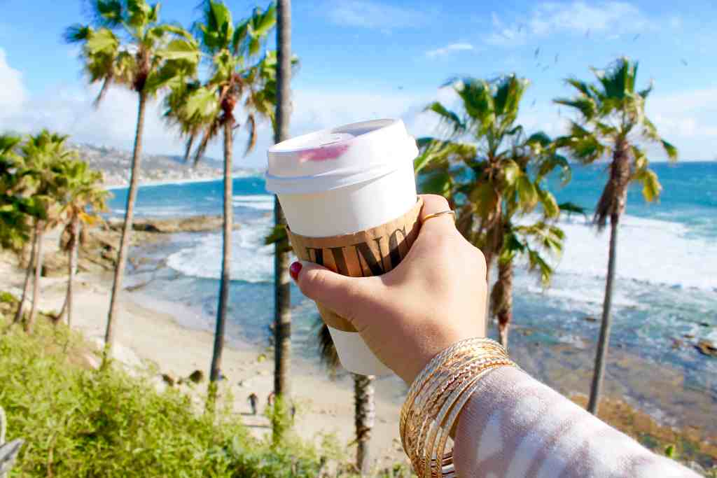 Laguna Beach Travel Guide Republic of Rose Heisler Park Zinc Coffee