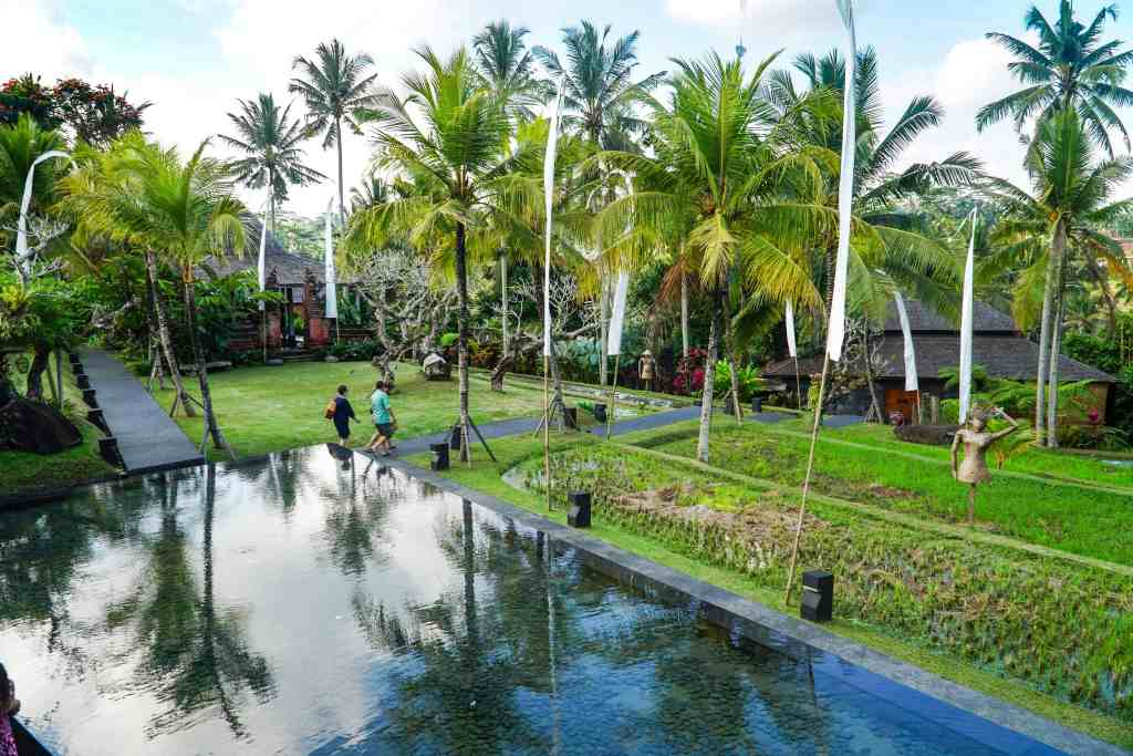 A DAY AT JUNGLE FISH IN UBUD | The Republic of Rose