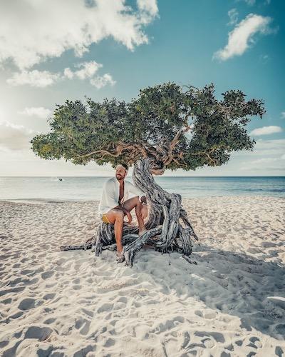 TheRerumNatura Fofoti Tree, Eagle Beach, Aruba