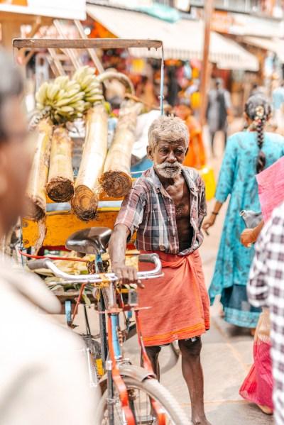 India - Madurai - Ritratto - Anziano