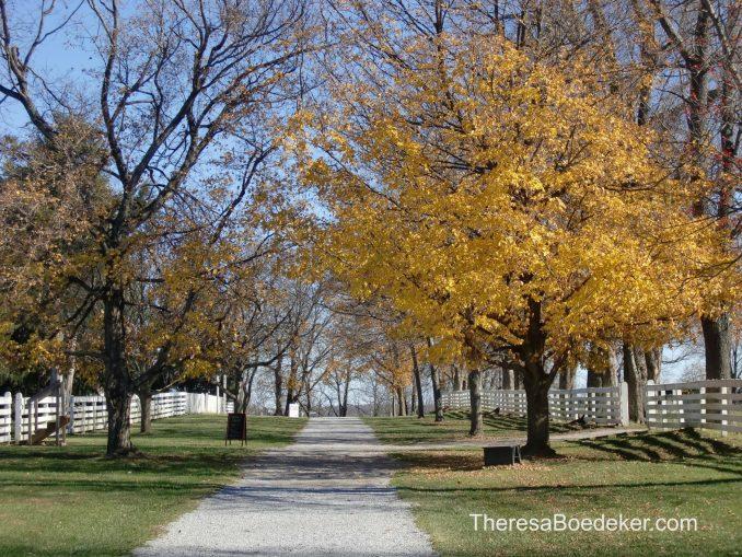 remembranceswindingroads10