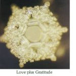 My Favorite Resources Emoto Love plus Gratitude