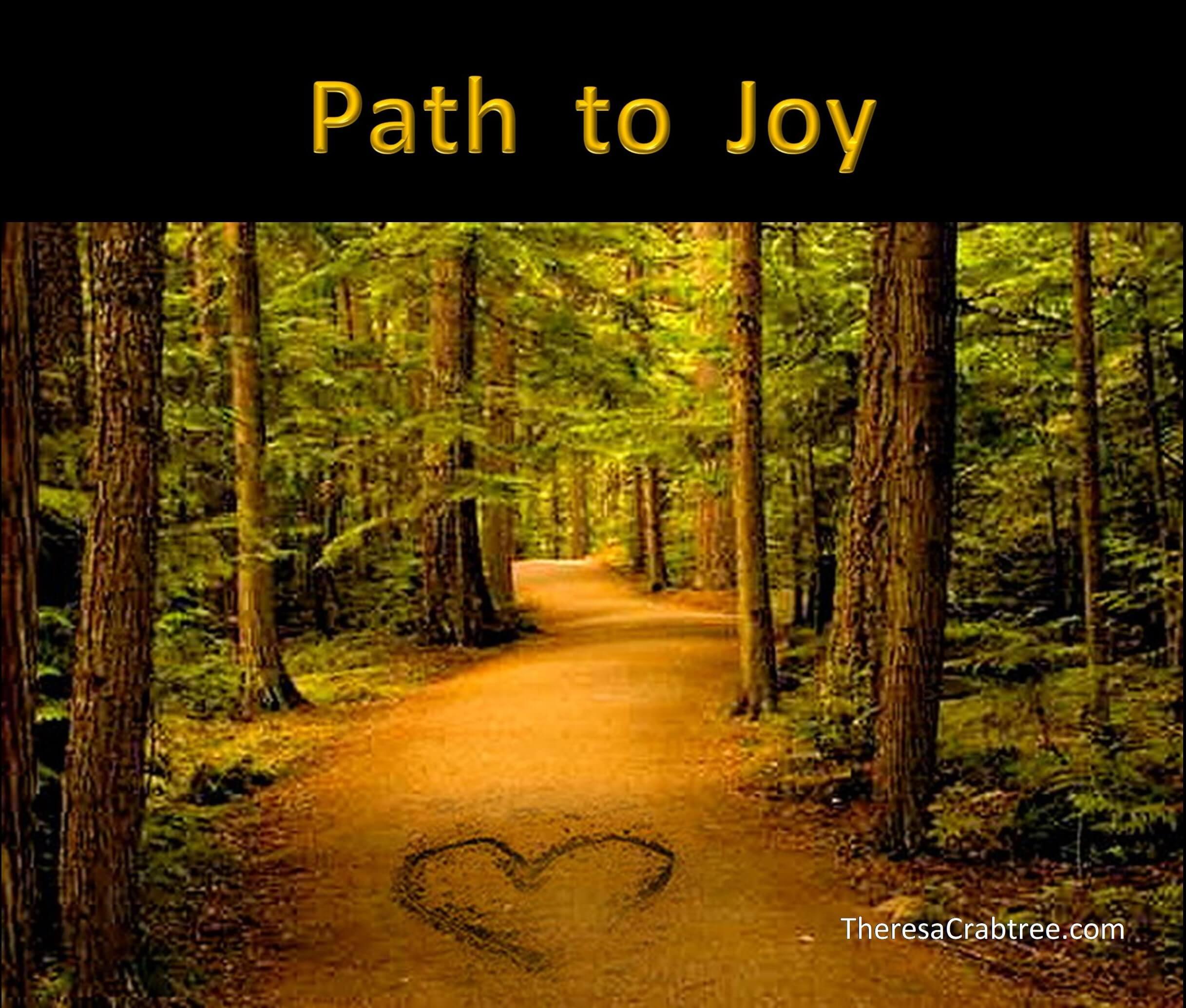 Soul Connection 31 ~ Path to Joy