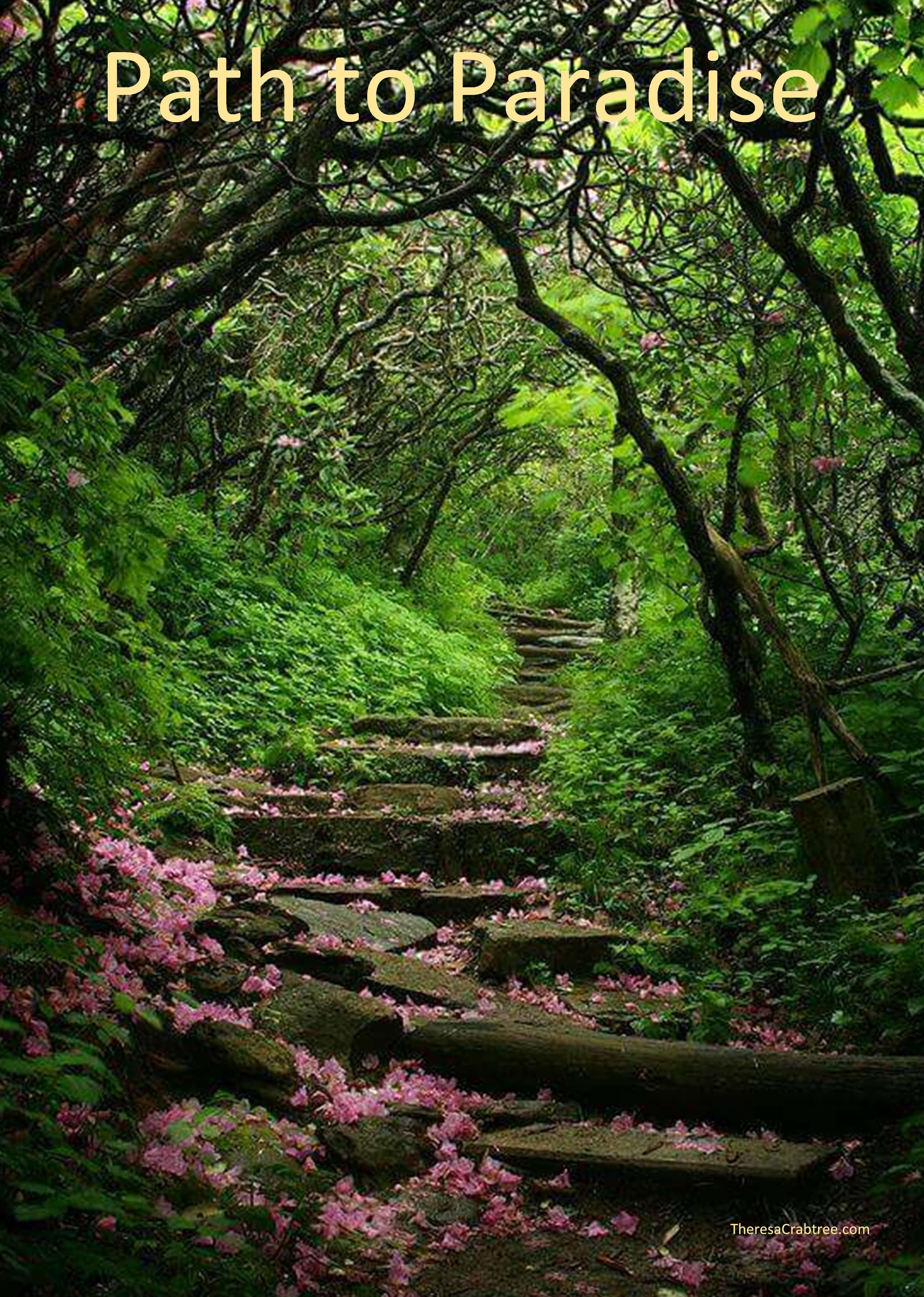 Soul Connection 52 ~ Path to Paradise