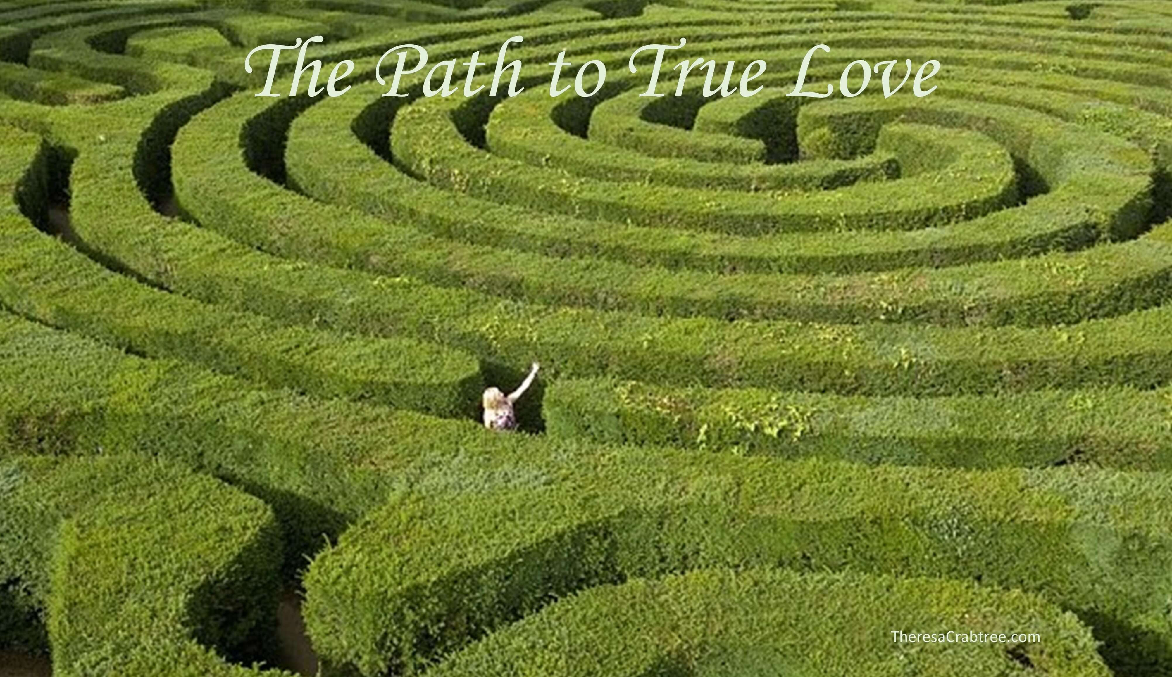 Soul Connection 81 ~ The Path to True Love