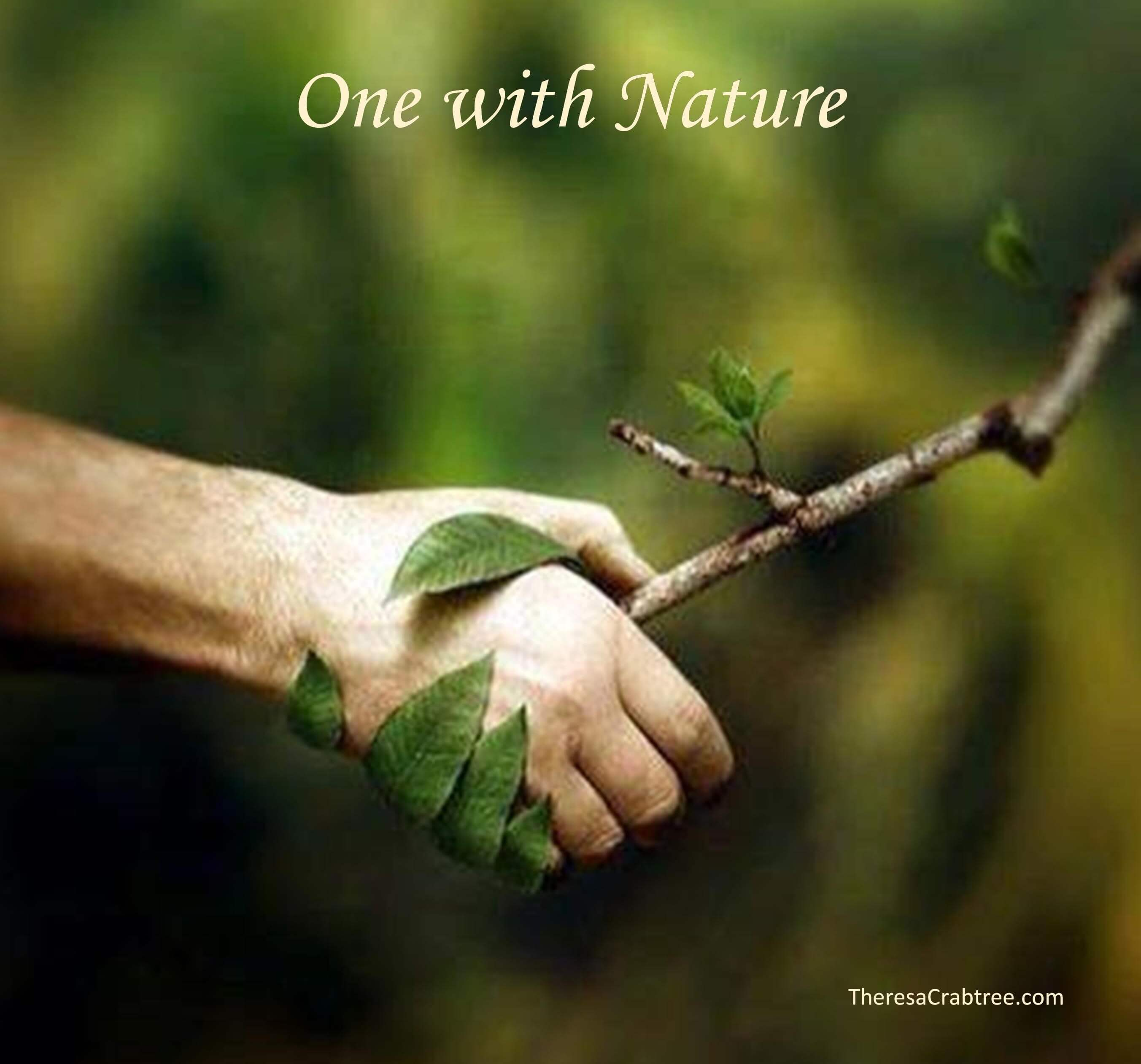 Soul Connection 93 ~ Meditation: One With Nature
