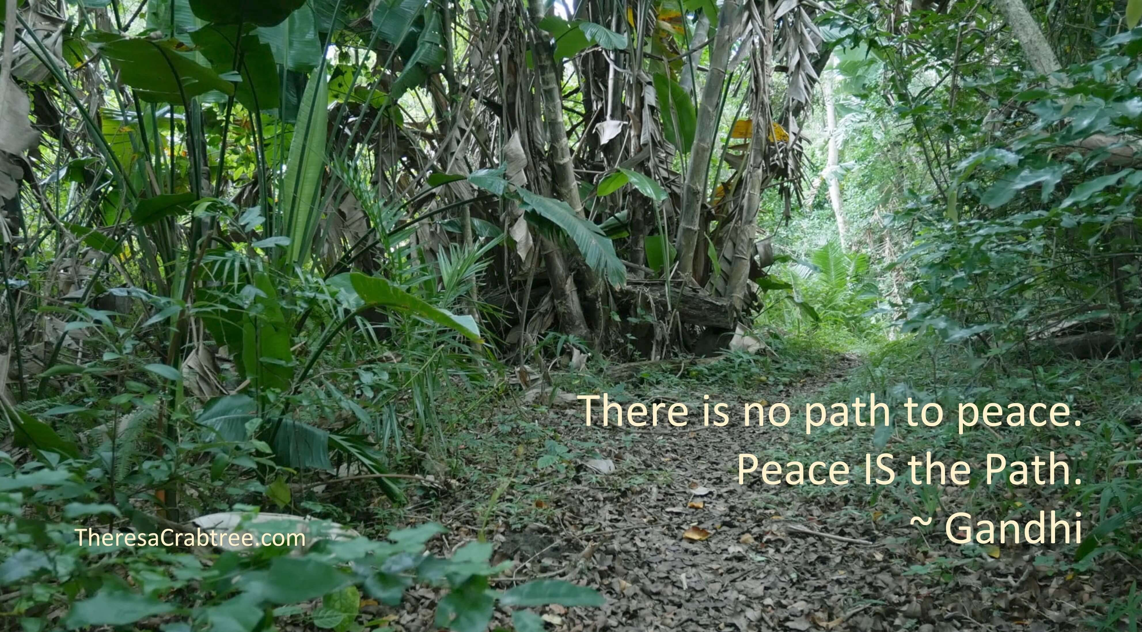 Soul Connection 103 ~ Peace is the Path