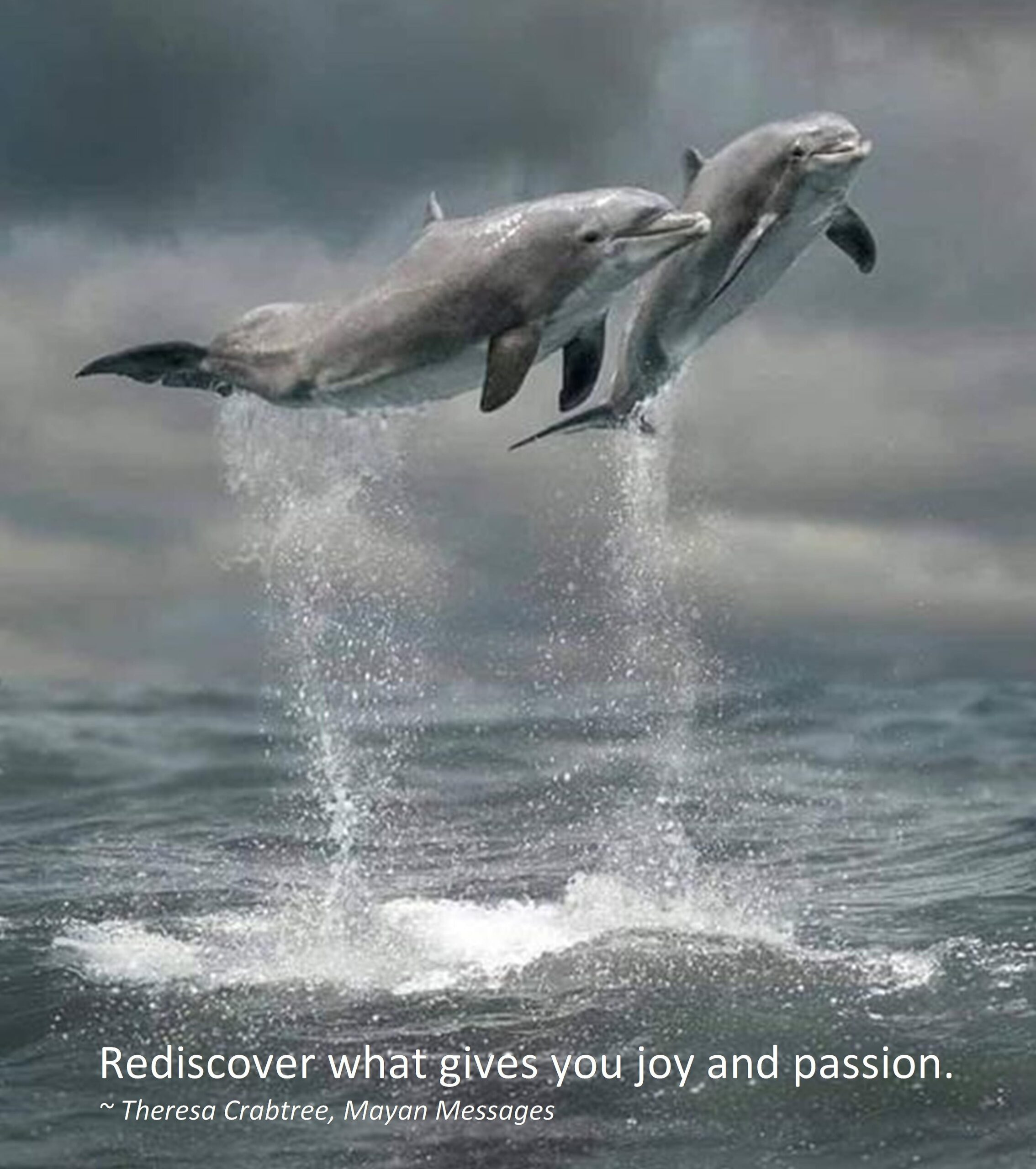 Rediscover Joy and Passion!