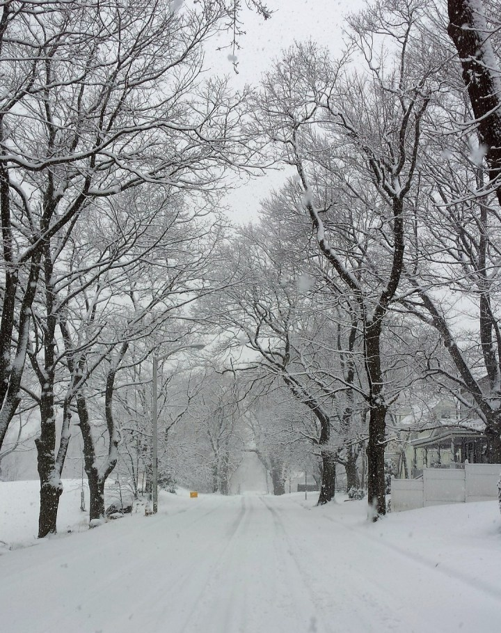 winter-in-new-england-605166_1920-cropped-2
