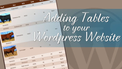 Add Tables to Your WordPress Website