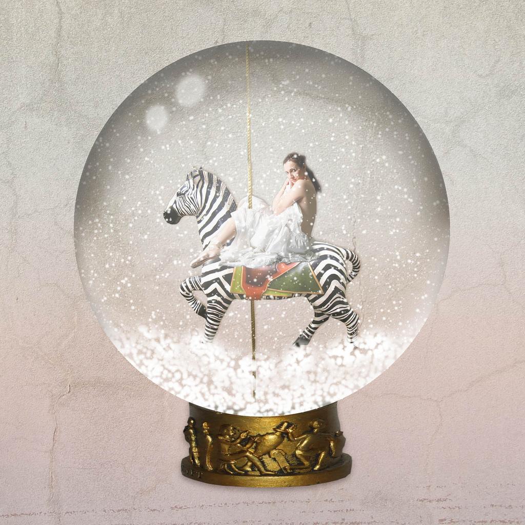 Zebra Snow globe