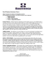 Small Business Insurance Basics