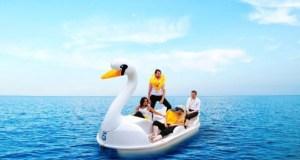 Two men, two women adrift on a swan pedalo