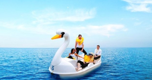 Two men, two women adrift on a swan pedalo