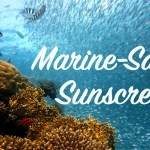 Marine Safe Sunscreen; Why it's Important!