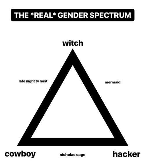 The Real Gender Spectrum The Rib Of Brown
