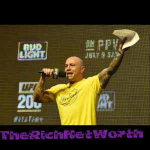 Joe Rogan Net Worth 2020