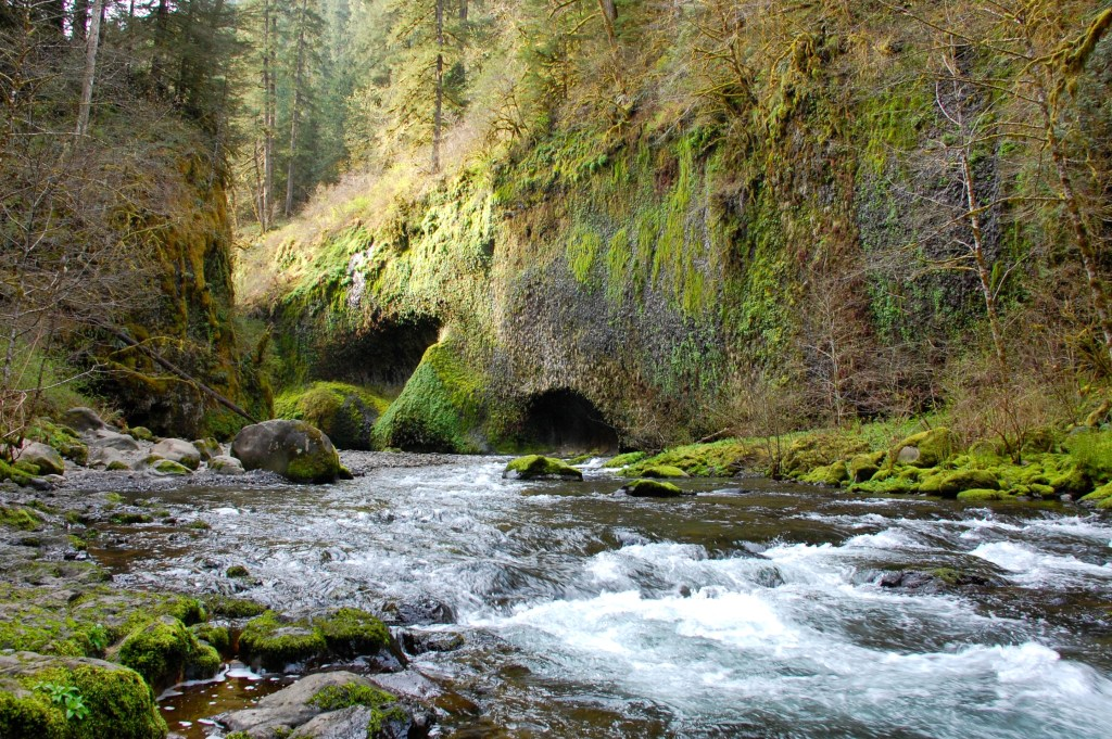 Eagle Creek Trail in the Columbia River Gorge | www.theringers.co