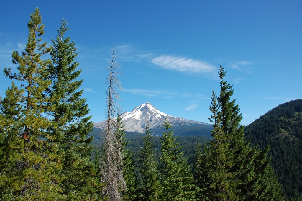 Palmateer Point, Mount Hood National Forest | theringers.co