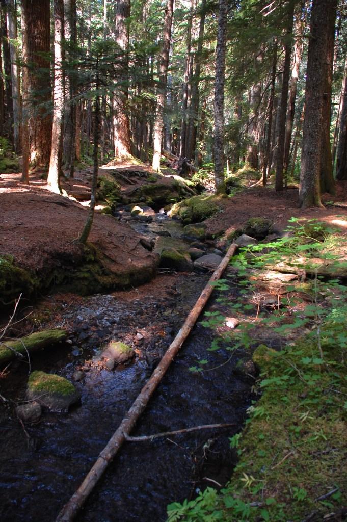 Ramona Falls, Oregon | theringers.co