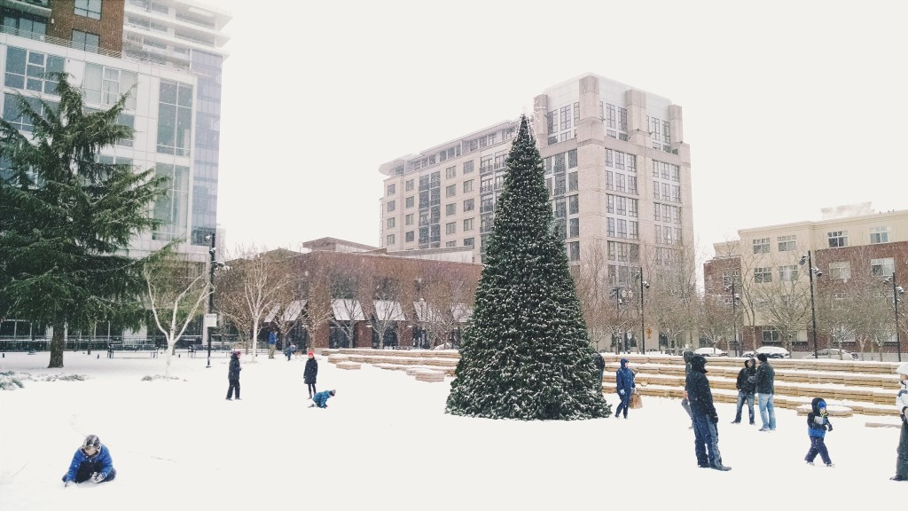 Snow in Portland | theringers.co