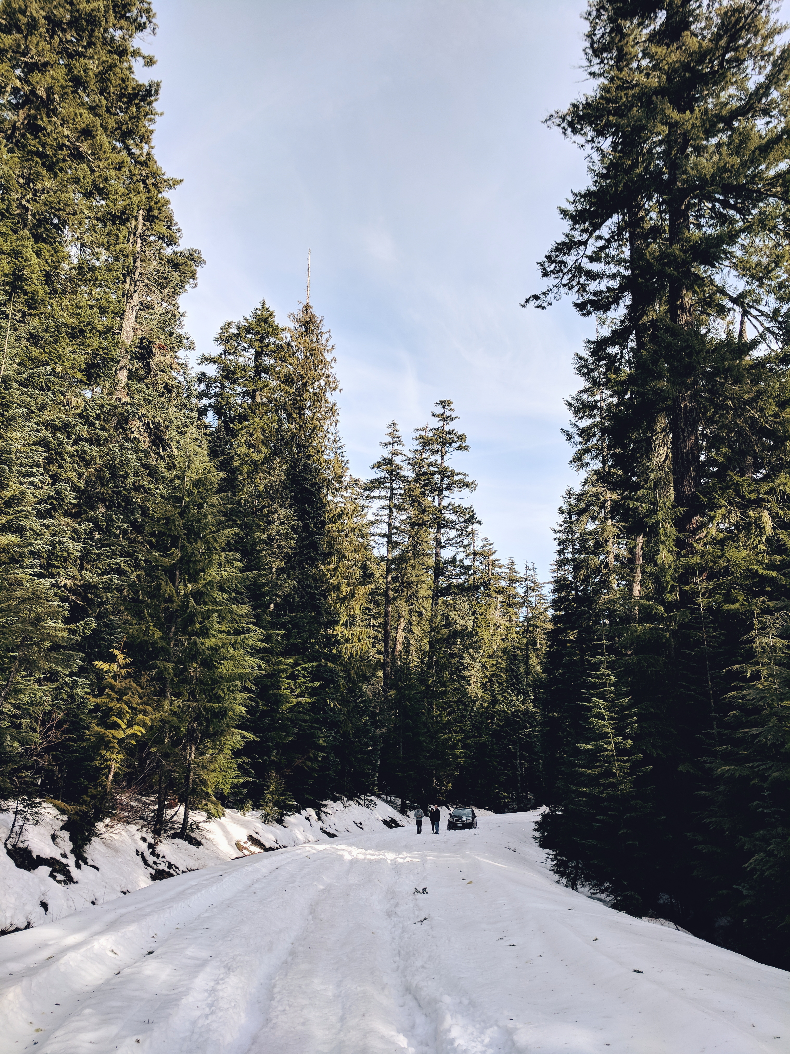 Mount Hood National Forest | theringers.co
