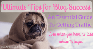 Start a Successful Blog Widgets for Monetization and Traffic Success. The Rising Damsel