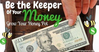 Be the keeper of your money. Tips to grow your honey pot. The Rising Damsel