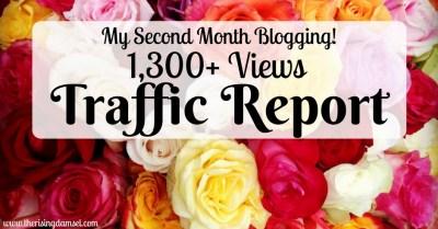 My 2nd Month Blogging 1,300+ Views Traffic Report. The Rising Damsel #girlboss #blogger #blog #career #wah #start #trafficreport