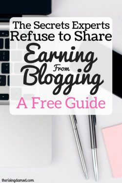 The Secrets Experts Refuse to Share. A free 7 day guide to make an income at home. The Rising Damsel #earn #blog #earning #blogger #startablog #freeguide #guide #community #work