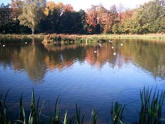 gartnaval pond