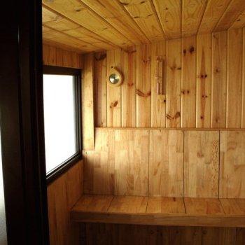 Sauna Help Remove Drug Toxins