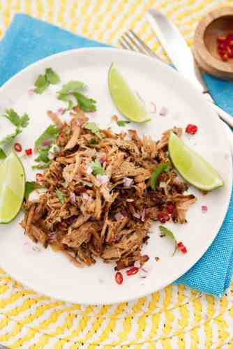 Pork Carnitas - Pulled Pork
