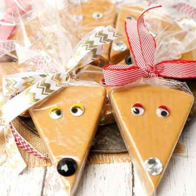Reindeer Caramel Fudge