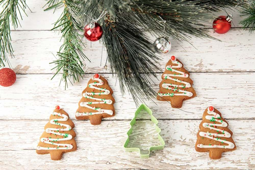 Thermomix Gingerbread Cookies