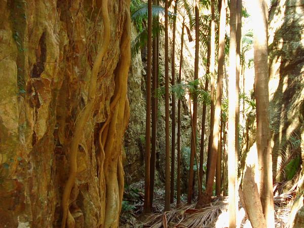 Gorge at Mt Greville in Queensland, Australia
